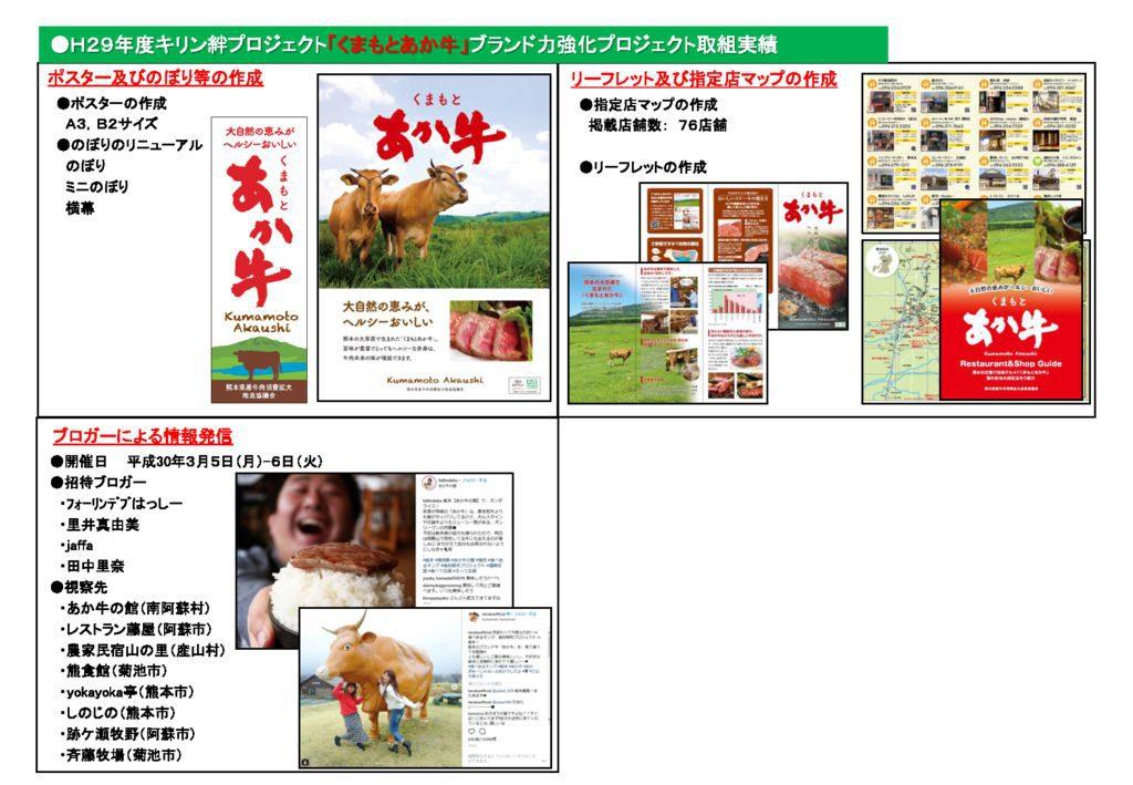 H29牛肉協議会概要(キリン絆PJ)_3のサムネイル